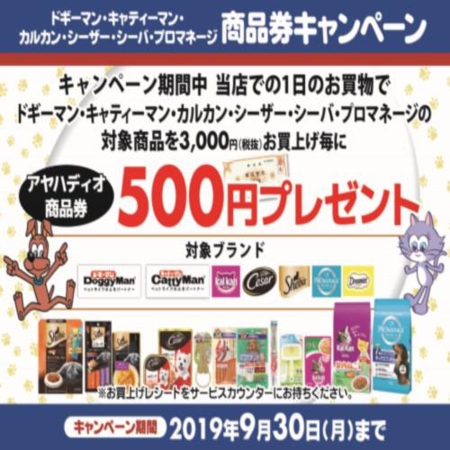 ドギーマン・マース 商品券キャンペーン 開催!