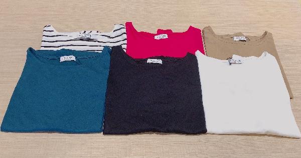 カラーTシャツコレクション